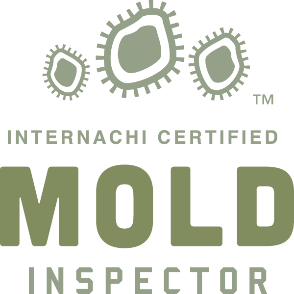 Mold Inspection Salt Lake Valley