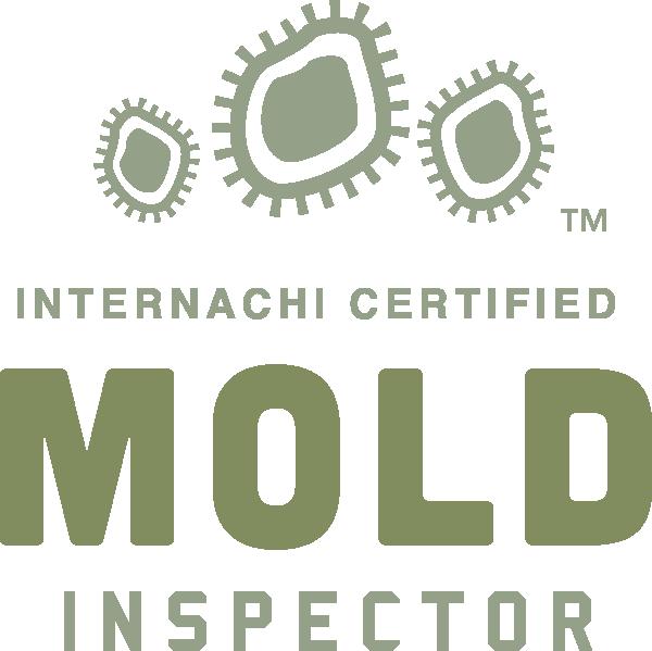 Mold Inspection Salt Lake Valley