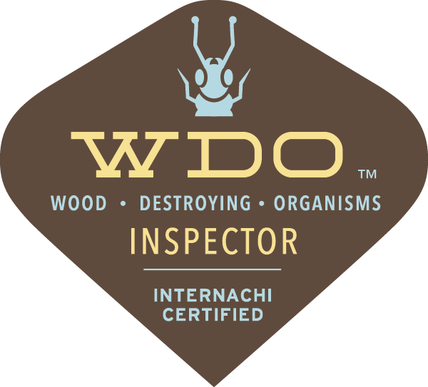 WDI wood destroying insect inspection - termite inspection sandy ut